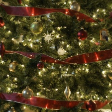 Crăciun Fericit!!!